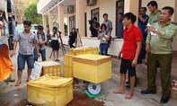 Bắt giữ xe tải chở hơn 700kg thịt động vật hôi thối