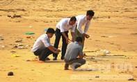 Cá chết bất thường hàng loạt trôi dạt ven bờ biển
