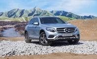 Mercedes-Benz trình làng bộ đôi GLC 250 và GLC 300 AMG