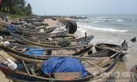 Dân miền biển điêu đứng vì cá nhiễm độc chết tràn lan