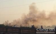 Đám cỏ khô bùng cháy dữ dội tại huyện Bình Chánh
