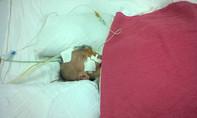 Một bé sơ sinh bị bỏ rơi tại bệnh viện, cần giúp đỡ