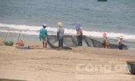 Nước biển ở Đà Nẵng không bị nhiễm độc