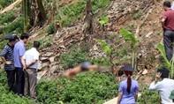 Bắt khẩn cấp nghi phạm giết người trên đại lộ Thăng Long