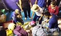Hàng chục tấn cá được tiêu thụ nhanh chóng tại Quảng Bình