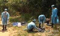 Đôi tình nhân sát hại người lái xe ôm sa lưới khi lẫn trốn tại Đà Lạt