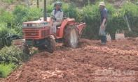 Anh nông dân chế tạo máy đào khoai tây đa năng