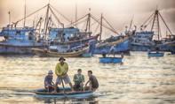 Việt Nam đẹp lung linh trong cuộc thi ảnh của National Geographic