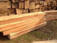 Cất gỗ lậu trong chuồng gà