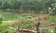 Người dân khốn đốn vì trại nuôi heo bơm chất thải ra môi trường