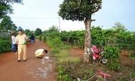 Tông vào cây mít bên đường, 2 nam thanh niên tử vong