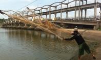 Đồng bằng sông Cửu Long sau hạn mặn lịch sử: Kỳ 2 - Nỗi lo bên đập Ba Lai