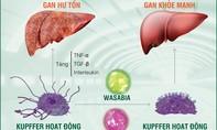 Sự thật về nhiễm độc gan