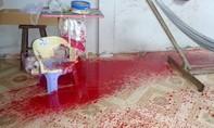 Tiền Giang: Nhiều vụ khủng bố bằng 'bom sơn' vào nhà phóng viên, ctv báo chí