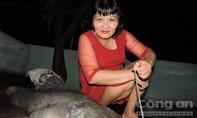 """Bắt được cá lăng """"khủng"""" nặng 50kg trên sông Sêrê Pốk"""