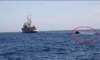 Yêu cầu Trung Quốc bồi thường tàu cá Quảng Ngãi bị đâm chìm