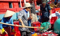 Ngư dân kiên cường bám biển