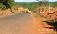 Cách chức giám đốc lâm trường vì để mất rừng