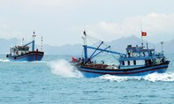 9 tàu cá của ngư dân Bình Thuận bị Indonesia bắt