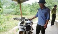 Nghệ An: Côn đồ đạp cửa tấn công cán bộ lâm trường trong đêm