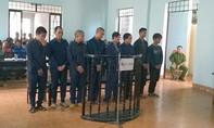Cướp chó làm thịt nhậu, 8 thanh niên lãnh án tù
