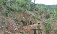 Quảng Ngãi: Bao vây, truy quét bãi vàng phá nát rừng