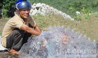 Độc đáo giếng nước tự phun lên khỏi mặt đất cả mét