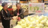 LOTTE Mart tăng cường tiêu thụ 25 tấn bắp cải cho nông dân Lâm Đồng