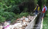 Công ty Đài Loan gây ô nhiễm bị đề nghị xử phạt gần 300 triệu đồng
