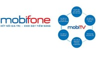 Thanh tra vụ Mobifone mua 95% AVG