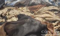 Phát hiện xe tải vận chuyển gần 4 tấn da trâu, bò hôi thối