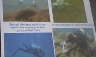 Nước biển an toàn, người dân có thể an tâm tắm biển