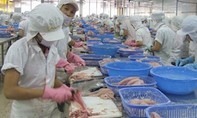 Xem xét khởi tố vụ kiểm định khống hơn 800 sản phẩm tại Tổng cục thủy sản