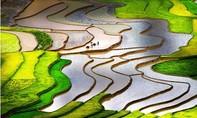 Phát động Cuộc thi ảnh Di sản Việt Nam lần thứ 5