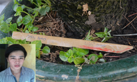 Con đâm chết cha dượng ở Sài Gòn vì bị than phiền chuyện nhậu nhẹt