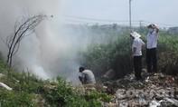 Tiêu hủy 16 con heo lở mồm, long móng tại Đồng Nai