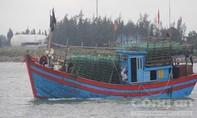 Trên 400 tàu cá chưa vào bờ