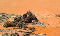 Sự cố thủy điện Sông Bung 2: Tích cực tìm kiếm các nạn nhân