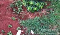 Xác người phụ nữ trong vườn với con dao trên ngực