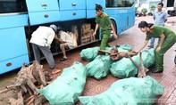 Bắt giữ chiếc xe khách chở 9 bao tải gỗ trắc