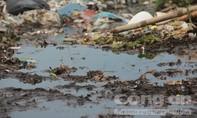 Người dân Hội An 'ám ảnh' mùi hôi thối bốc ra từ bãi rác
