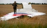 Đội điều tra quốc tế: Máy bay MH17 bị tên lửa của Nga bắn rơi