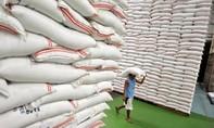 Thủ tướng chỉ đạo hỗ trợ hơn 10.000 tấn gạo cho 12 tỉnh