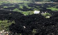 Chợ Bình Điền xả thải trái phép ra môi trường