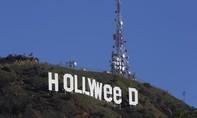Biểu tượng Hollywood bỗng dưng bị đổi thành 'Hollyweed'