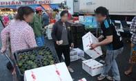 Rau quả Trung Quốc ùn ùn về VN đón tết