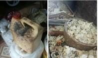 Xử phạt 11 cơ sở vi phạm vệ sinh an toàn thực phẩm