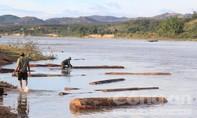 Vụ cung đường gỗ lậu trên sông: Làm rõ trách nhiệm của chính quyền địa phương