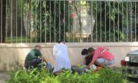 Người đàn ông nước ngoài đột quỵ giữa trung tâm Sài Gòn