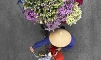 Ngắm gánh hàng hoa ở Hà Nội dịp Tết